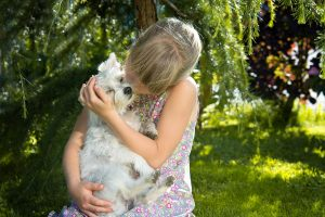Dogs can help people feel good